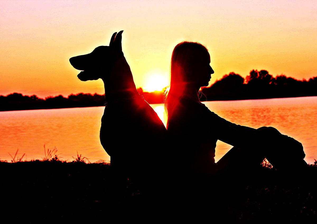 Dog with erect ears sitting back to back with woman with a sunsetting over a lake in background
